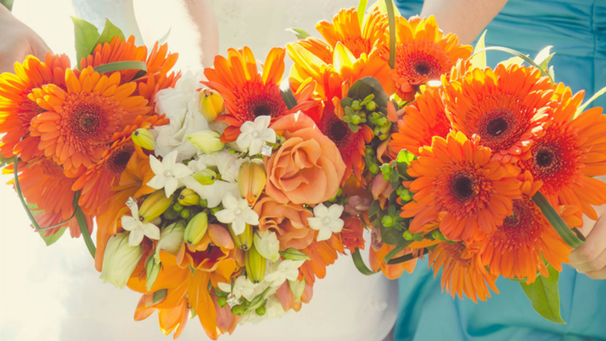 albuquerque wedding florist reviews rio rancho websites. Black Bedroom Furniture Sets. Home Design Ideas